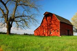 Red_Barn_(Clackamas_County,_Oregon_scenic_images)_(clacDA0032b)